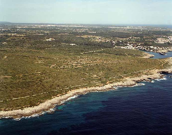 Playa de Cala Alcaufar en Sant Lluís - imagen 5