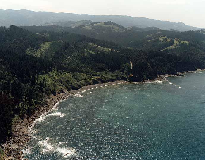 Playa de Laida en Ibarrangelu - imagen 6